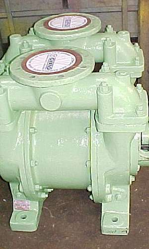 Manutenção de bomba de vácuo